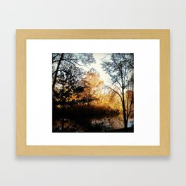 Central Park in the Fall Framed Art Print