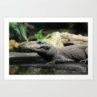 crocodile Art Prints featuring Crocodile by Falko Follert Art-FF77