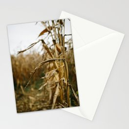 Autumn Cornstalk I Stationery Cards