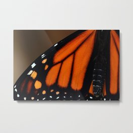 Wing of a Monarch Metal Print