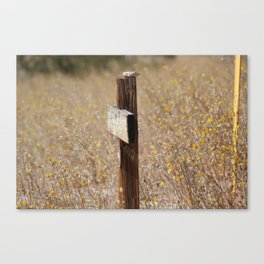 Rock on Country Sign Coachella Valley Wildlife Preserve Canvas Print