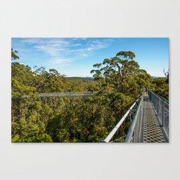 Valley Of The Giants (Tree Top Walk), Denmark, Western Australia Canvas Print