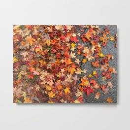 Red Leaves on Wet Pavement Metal Print