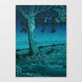 Nightime in Gissei Canvas Print