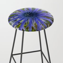 A thistle with style Bar Stool