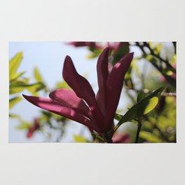 Spring Magnolia Rug