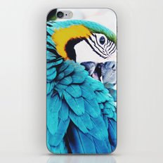 Parrot Life iPhone & iPod Skin
