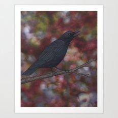 crow on a branch bokeh Art Print