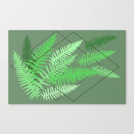 Ferns - Rockport State Park Canvas Print
