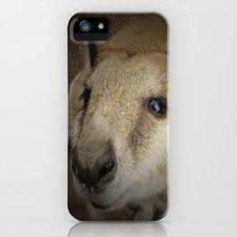 Cuteroo iPhone Case