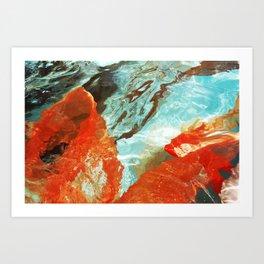 Orange Poppy Kunstdrucke