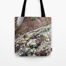 devils tower moss Tote Bag