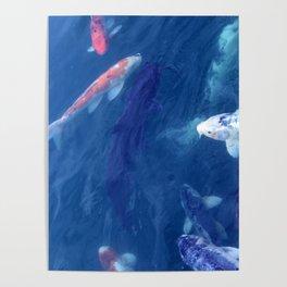 Catfish with Koi Poster