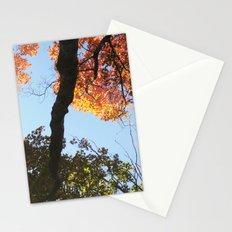 take a HIKE ☺ Stationery Cards