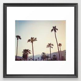Palm Trees in the Desert Framed Art Print