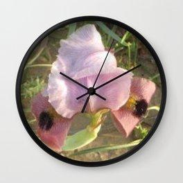 Iris of the Negev Wall Clock