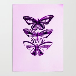 Pink and black butterflies, with pastel pink or pastel purple Poster
