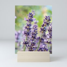 Lavender Flowers #1 #floral #art #society6 Mini Art Print