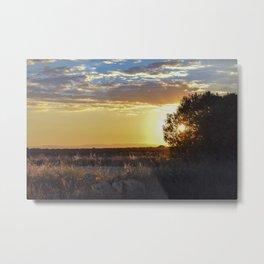 Through the tree Metal Print