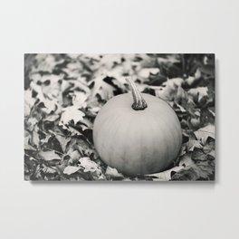 Little Pumpkin 2 Metal Print