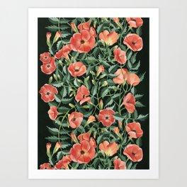 Campsis love Art Print