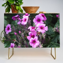 Beauty on The Rock Credenza
