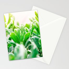 Nature photography garden II Stationery Cards