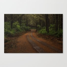 Finer Forestry Canvas Print
