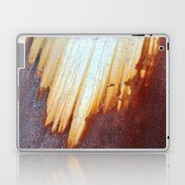 Rain Rusted Roof Laptop & iPad Skin
