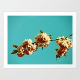 Spring Dreamin' Art Print