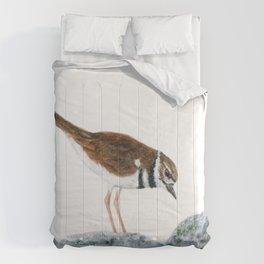 Killdeer Art 2 by Teresa Thompson Comforters