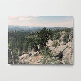 Black Hills, Custer State Park, South Dakota Metal Print