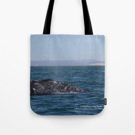 Cecilia, Pacific Gray Whale, Tote Bag