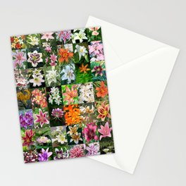Lily Montage Stationery Cards