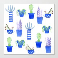 succulents Canvas Prints featuring Succulents by Nic Squirrell