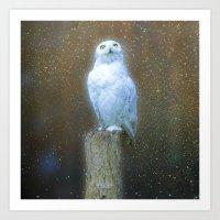 Harry Potter's Hedwig Art Print