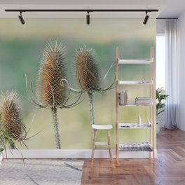 Look out - prickly plant ! Wall Mural