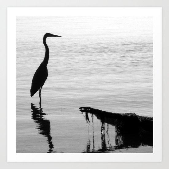 Black and White Heron Art Print