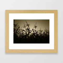 Peek-a-boo! Framed Art Print