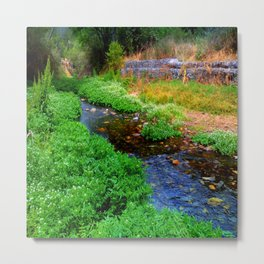 Gentle Stream at the Botanical Gardens Metal Print