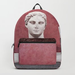 Handsome Backpack