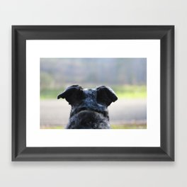 Where Next? Framed Art Print