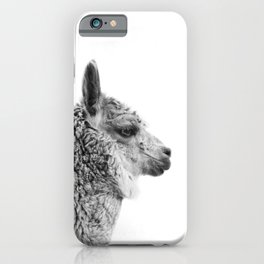 Llama Drama | Alpaca Animal Photography iPhone Case