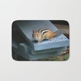 Chip on the Block: Adirondack Chipmunk Bath Mat
