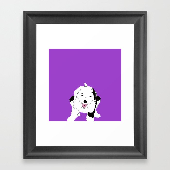 Gypsy The Sheepadoodle Framed Art Print