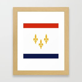 flag of new orleans,NOLA,Crescent City,Big Easy,Nawlins, jazz,Lousiana,french,cajun,treme Framed Art Print
