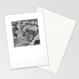 Noonday Farm Cabbage Stationery Cards