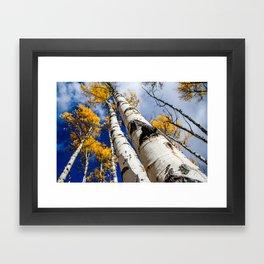 Blue Bird Sky. Autumn in Colorado. Framed Art Print
