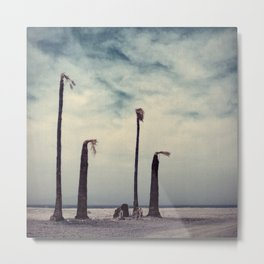 Salton Sea, California Metal Print