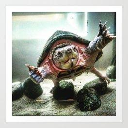 Terrified Turtle Art Print